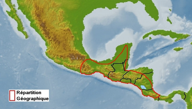 zone de répartition de Parides eurimedes mylotes